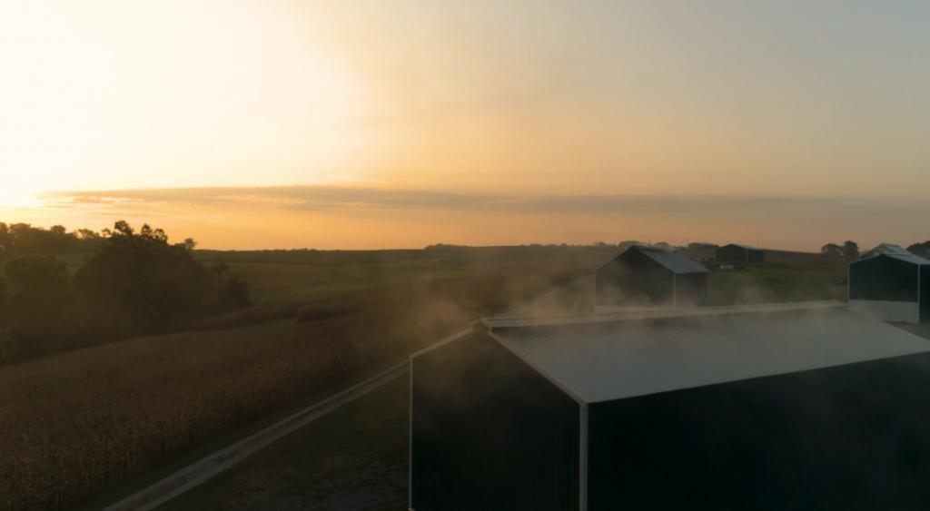 Kentucky Smoking Barns